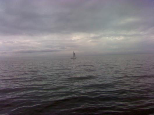 Lone sailboat 1-1-11